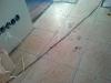 IMG_20131204_125335_800x600